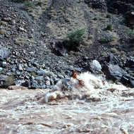 A raft doing a tube-stand in the entry to Hermit Rapid.