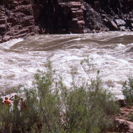 Private river runners scouting Granite Rapid.