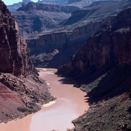 The Colorado River just above Hance Rapid.