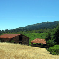 Barns at Jack London's Beauty Ranch, Jack London State Park.