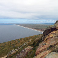 A view of the mile-long beach at Point Reyes.