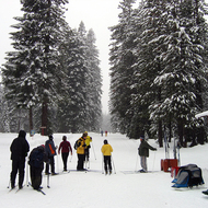 Skiers at the Mt. Shasta Cross Country Ski Center.