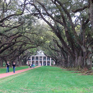 A view of the mansion from the Oak Alley at Oak Alley Plantation (near New Orleans).
