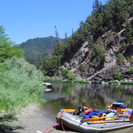 The Lower Klamath River below Dragon's Tooth rapid, with a large bird's nest in a tree-top.