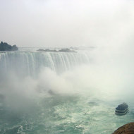 A view of Niagara Falls with a bird and the
