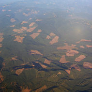 An aerial view of clearcut logging in Oregon, near Eugene.