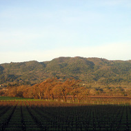 A winter sunrise over the Sonoma Valley, looking to Sonoma Mountain.
