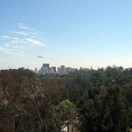 A view of downtown San Diego from the San Diego Zoo aerial tram.