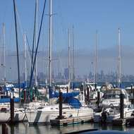 A view of San Francisco from Tiburon.