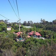 A view from the aerial tram at the San Diego Zoo.
