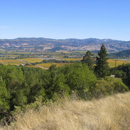 The Napa Valley from the Oakville Grade.