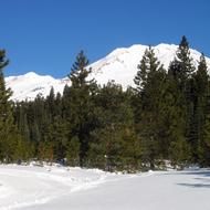 A view of Mt. Shasta from a cross-country skiing trail.