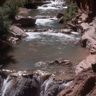 The Travertine dams of Havasu Creek on land of the Havasupai Tribe in the Grand Canyon.