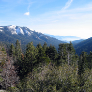 Big Baldy (left, 8,209 ft.) in winter with the Sequoia grove of Redwood Canyon below in Kings Canyon National Park.