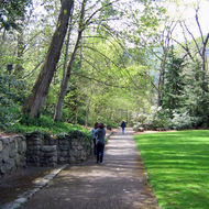 A path in Lithia Park, Ashland, Oregon.