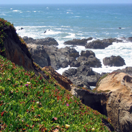 The California coast in San Mateo County, near Point Montara Lighthouse.
