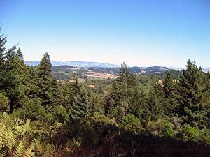 Thumbnail image ofA view of Sonoma County looking toward Santa Rosa...