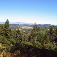 A view of Sonoma County looking toward Santa Rosa from outside Occidental, California
