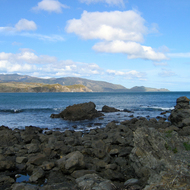 The mouth of Port Nicholson (Wellington Harbour), New Zealand.