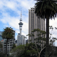 A view of downtown Auckland buildings, including the Sky Tower (328 metres tall).