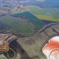 An aerial view of the San Francisco Bay wetlands and salt ponds.
