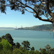 A view of the Golden Gate Bridge, Marin County, San Francisco, and sailboats on San Francisco Bay from a private home in Belvedere.