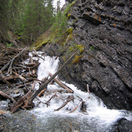 Brewster Creek in Sundance Canyon in Banff National Park.