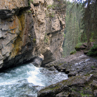 Johnston Creek in Johnston Canyon, Banff National Park, as it creates a waterfall.