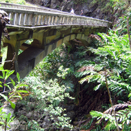 A bridge along the Hana Highway on Maui.