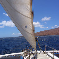 A catamaran sailing off the coast of Maui.