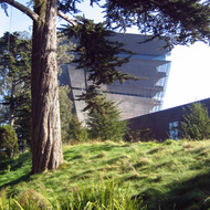 A view of the DeYoung Museum in San Francisco's Golden Gate Park.