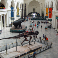 The entrance hall of the Field Museum of Natural History in Chicago, with