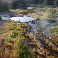 Hot springs on the East Fork of the Carson River below Markleeville, CA.