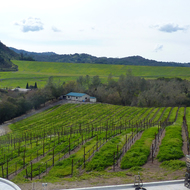 A view of the Warm Springs Dam that creates Lake Sonoma from the deck of the Sbragia Family Vineyards.