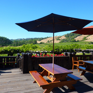 The deck of Navarro Winery in Mendocino County, California.