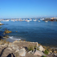 The harbor at Monterey.