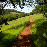 The Sonoma Overlook Trail on the outskirts of Sonoma, CA.