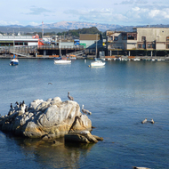 The wharf at Monterey Bay.
