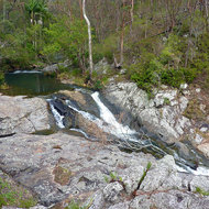 Cedar Creek in Tamborine National Park, just above the Falls.