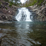 A waterfall in Tamborine National Park, Queensland, Australia.