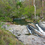 Cedar Creek in Tamborine National Park.