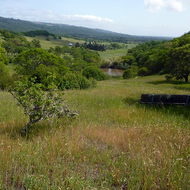 A view of Sonoma Valley from the Sonoma Valley Regional Park.