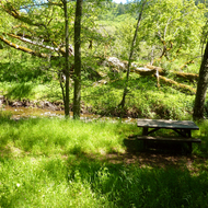 A creekside picnic area at Sugarloaf Ridge State Park.
