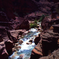 Havasu Creek on the land of the Havasupai Tribe in the Grand Canyon.