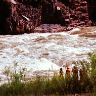 River guides scouting Granite Rapid in the Grand Canyon.