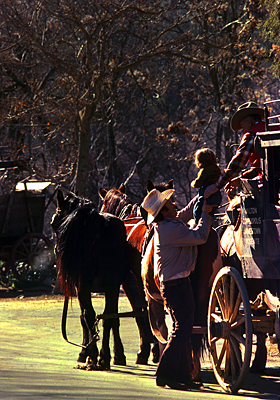 Thumbnail image ofThe stagecoach at Columbia State Historic Park.