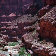 A Colorado River side canyon dwarfs some hikers from the river.