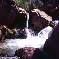 Taking a shower at a pool on Deer Creek in the Grand Canyon.