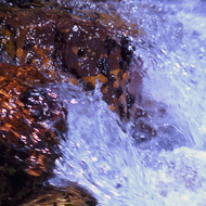 A close-up of a crystal stream in the Grand Canyon.
