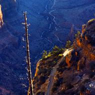 Looking down at Bright Angel Trail toward the Tonto Plateau in the Grand Canyon.